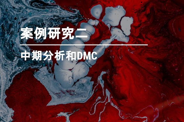 中期分析和DMC