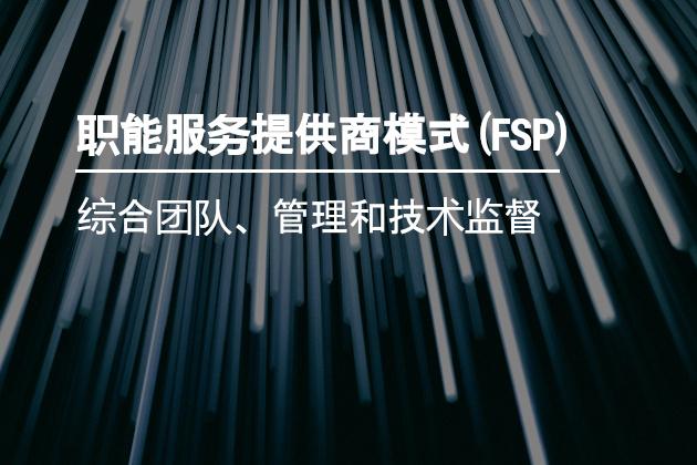 职能服务提供商模式(FSP)